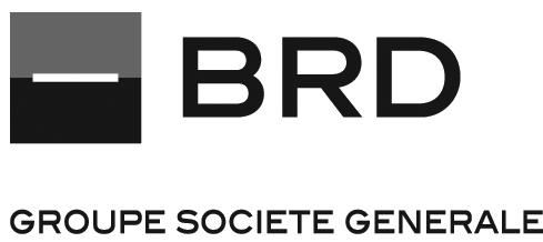 BRD socgen grey